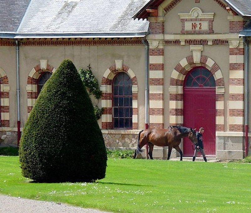 haras - ACTIVITÉS & RESTAURATION - Location de Gite La Clef Decamp - Laclefdecamp.fr
