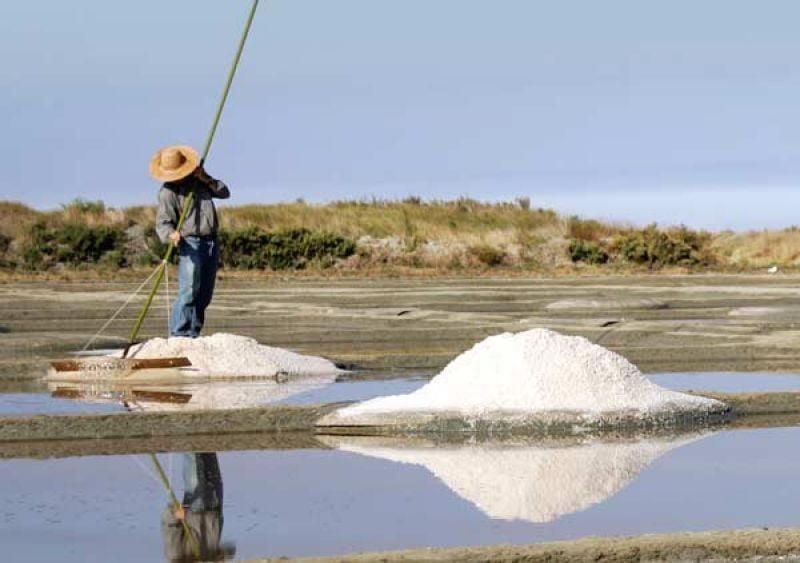 INFOS TOURISTIQUES terre de sel